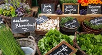 Farmers Markets Dates Events